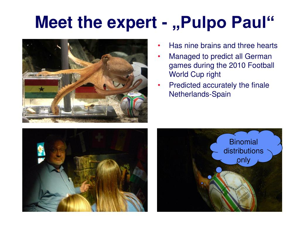 """Meet the expert - """"Pulpo Paul"""""""