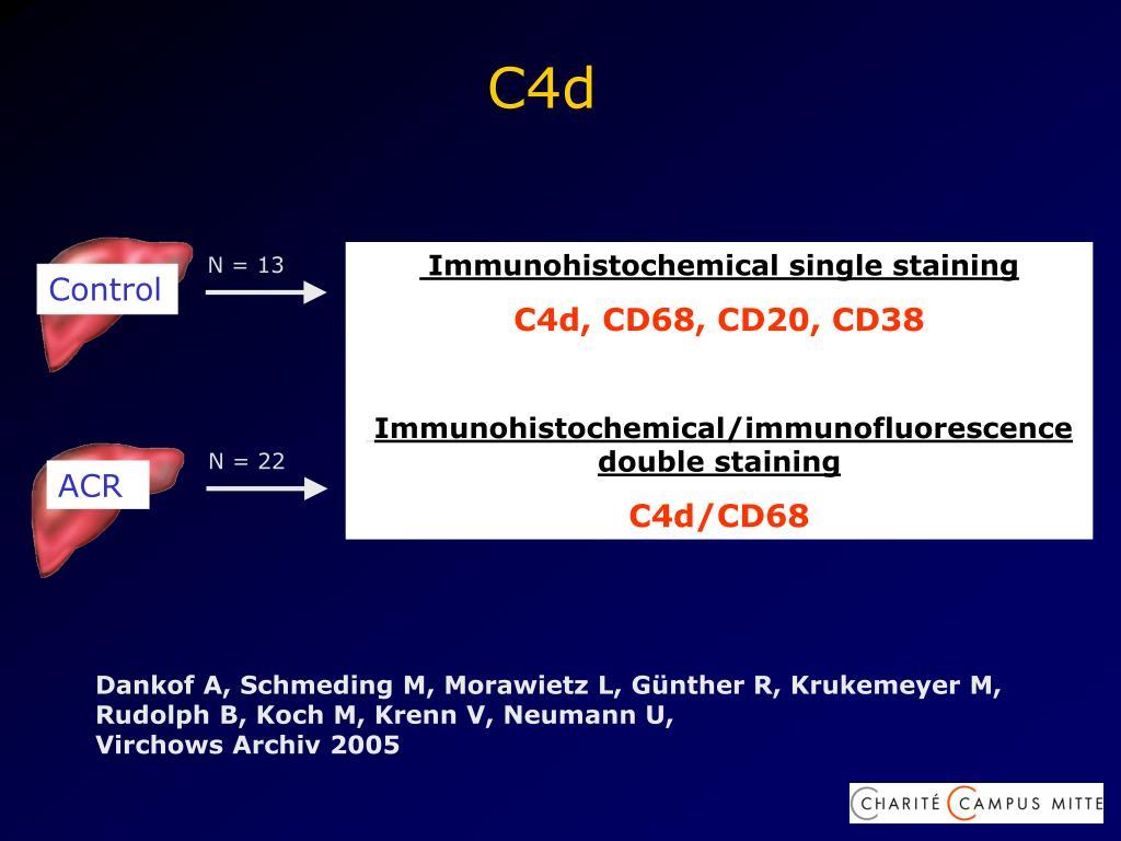 Immunohistochemical single staining