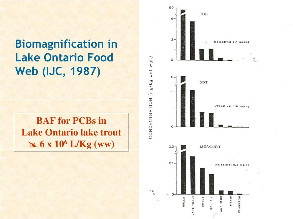 Biomagnification in Lake Ontario Food Web (IJC, 1987)