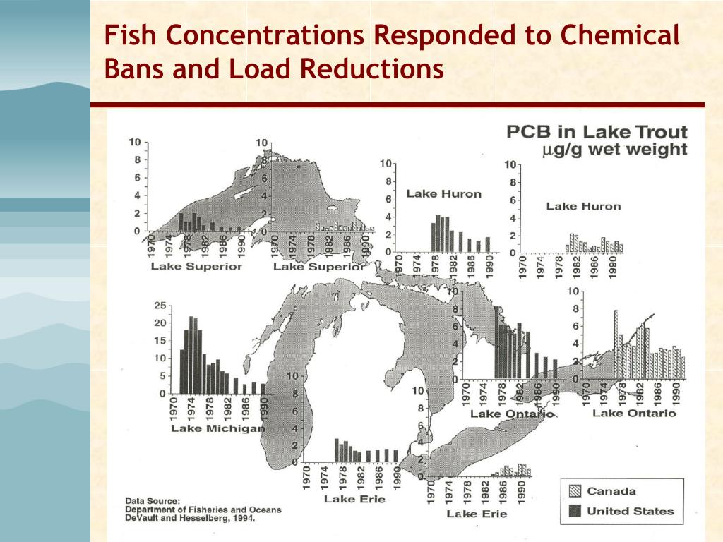 Fish Concentrations Responded to Chemical Bans and Load Reductions
