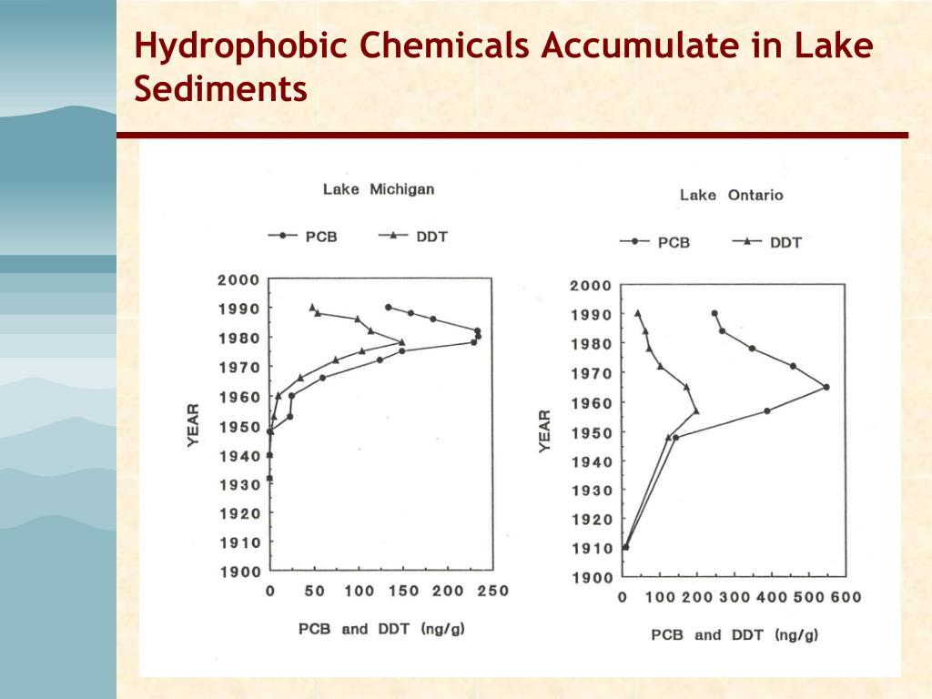 Hydrophobic Chemicals Accumulate in Lake Sediments