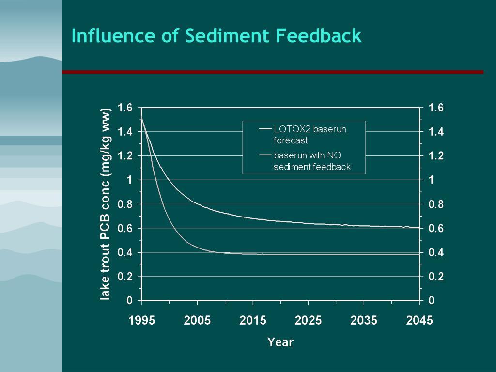 Influence of Sediment Feedback