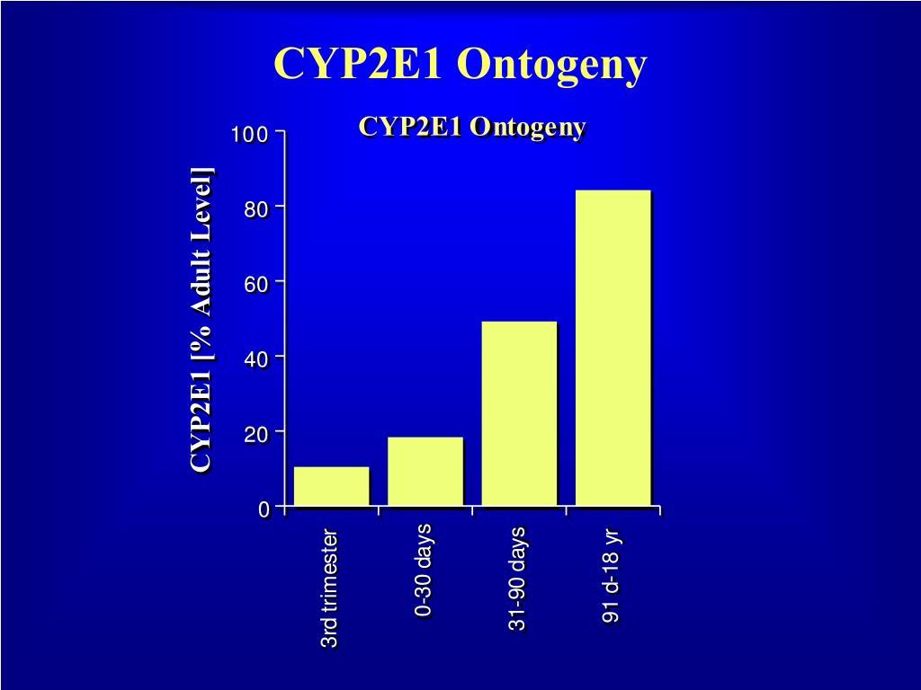 CYP2E1 Ontogeny