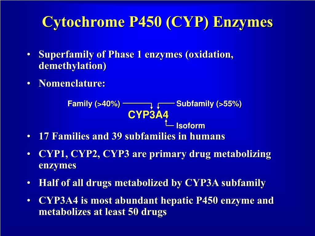 Cytochrome P450 (CYP) Enzymes