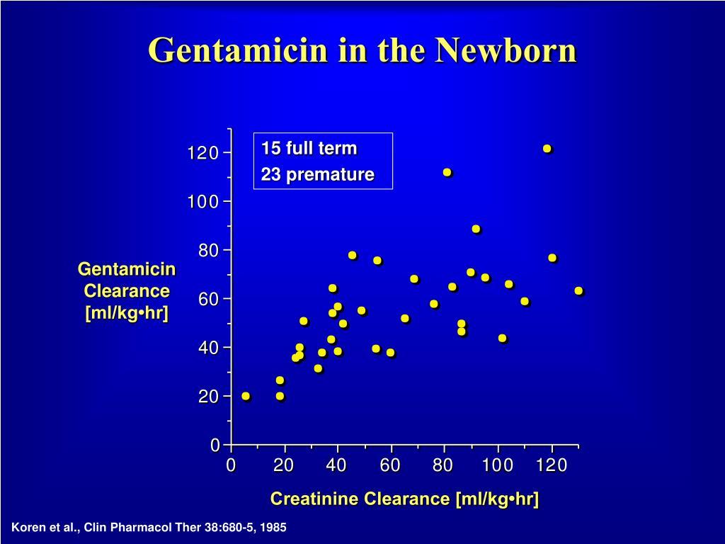 Gentamicin in the Newborn