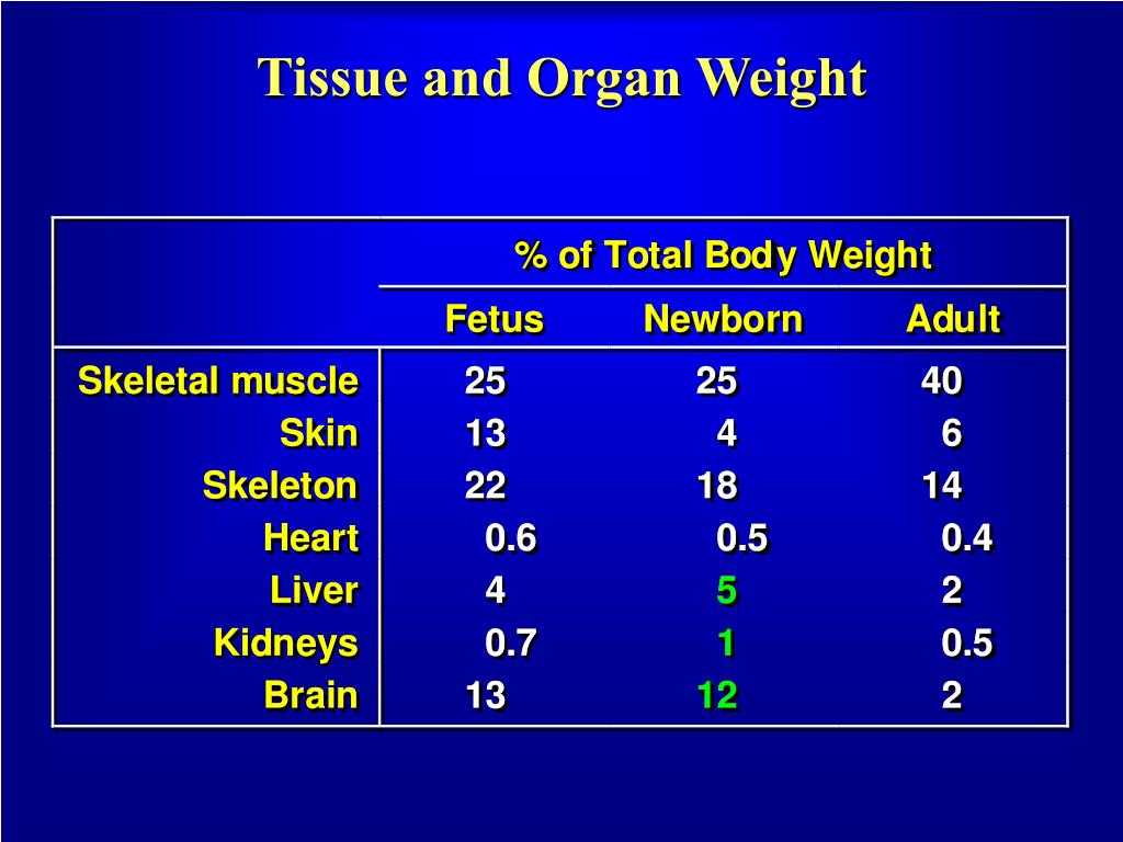 Tissue and Organ Weight