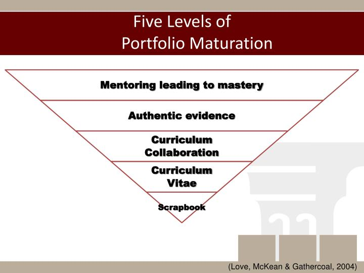 Five levels of portfolio maturation