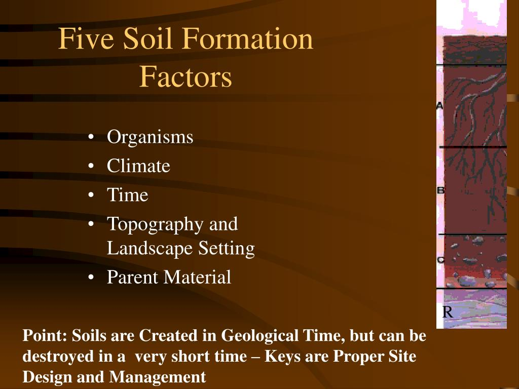 Five Soil Formation
