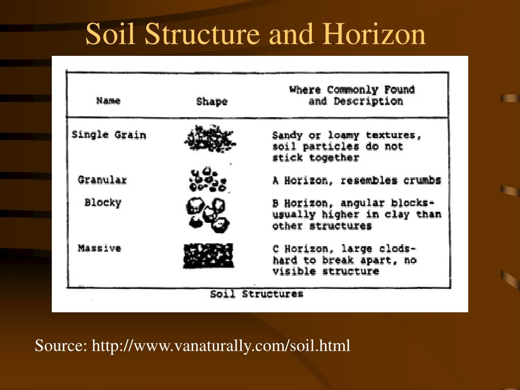 Soil Structure and Horizon