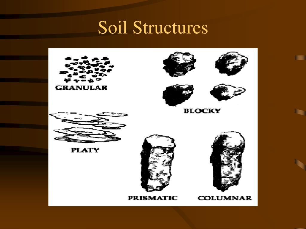 Soil Structures