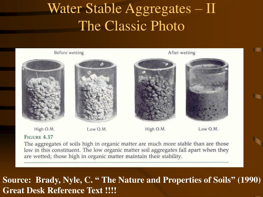Water Stable Aggregates – II