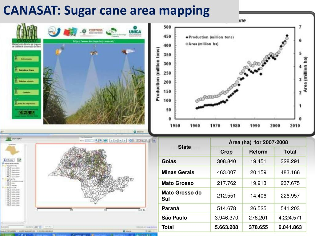 CANASAT: Sugar cane area mapping