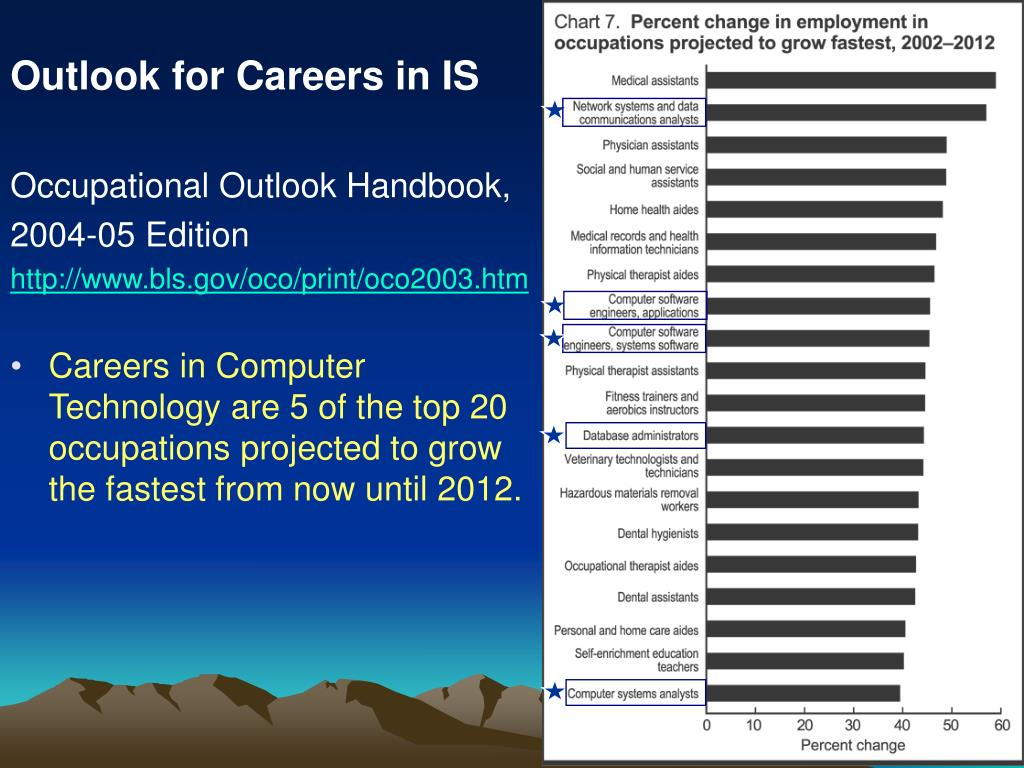 Outlook for Careers in IS