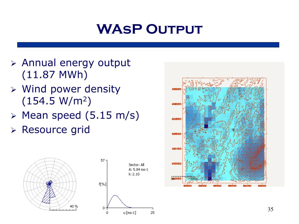 WAsP Output