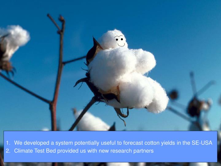 We developed a system potentially useful to forecast cotton yields in the SE-USA