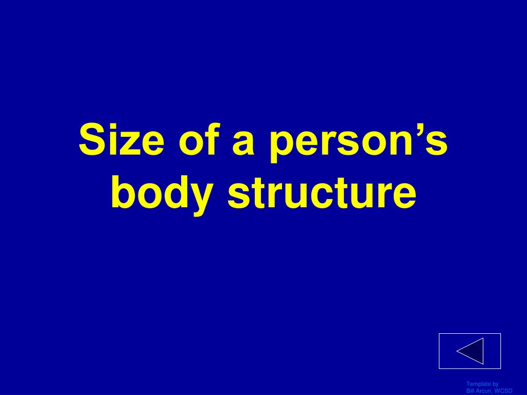 Size of a person's body structure