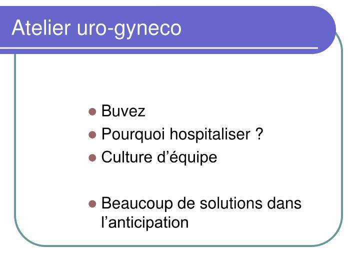 Atelier uro gyneco