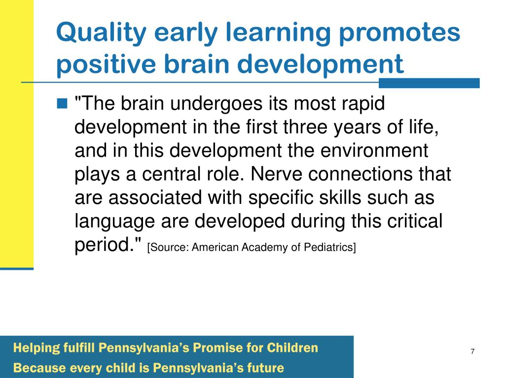 Quality early learning promotes positive brain development