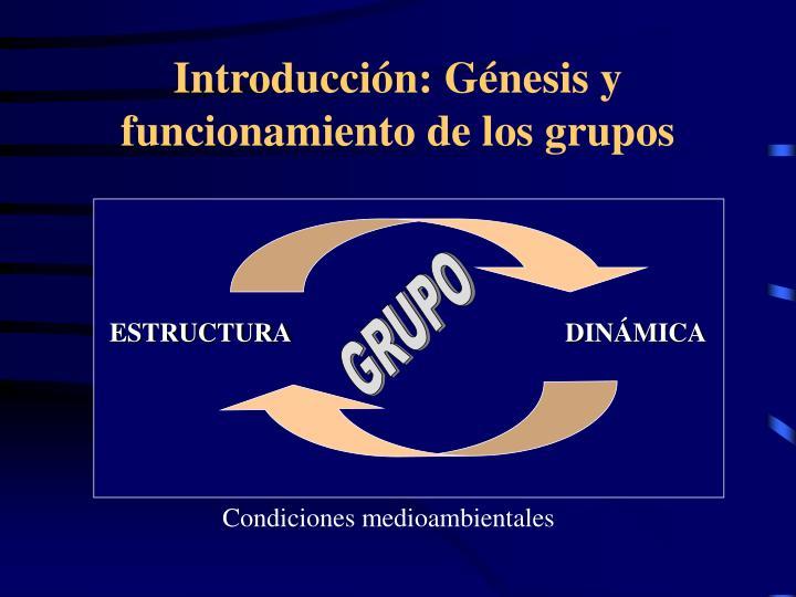 Introducci n g nesis y funcionamiento de los grupos