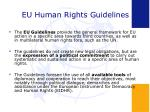 eu human rights guidelines9