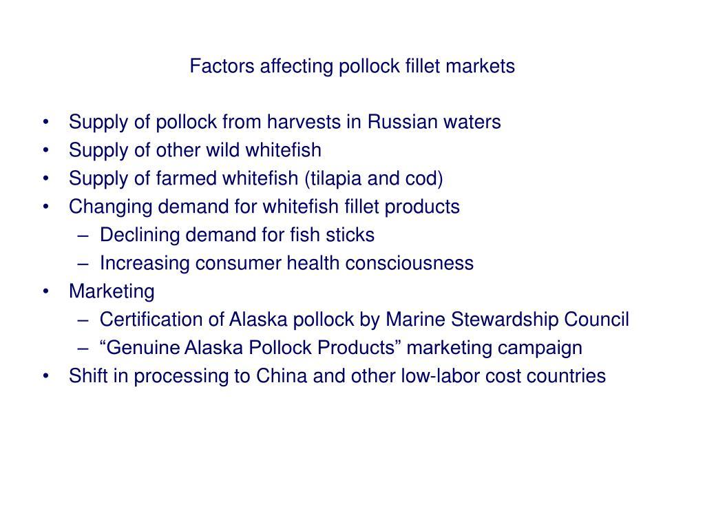 Factors affecting pollock fillet markets
