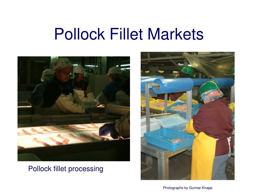 Pollock Fillet Markets