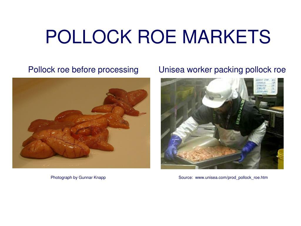 POLLOCK ROE MARKETS