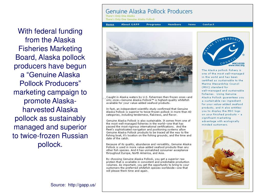 """With federal funding from the Alaska Fisheries Marketing Board, Alaska pollock producers have begun a """"Genuine Alaska Pollock Producers"""" marketing campaign to promote Alaska-harvested Alaska pollock as sustainably managed and superior to twice-frozen Russian pollock."""