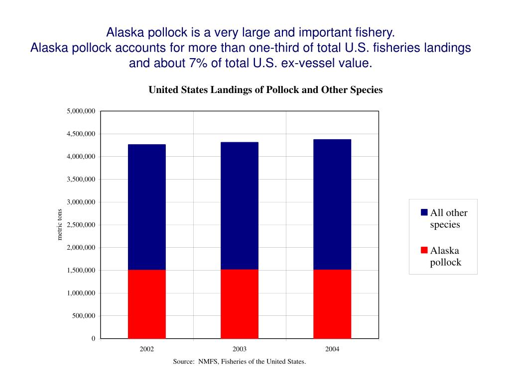 Alaska pollock is a very large and important fishery.