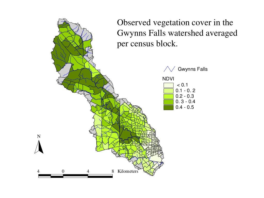 Observed vegetation cover in the