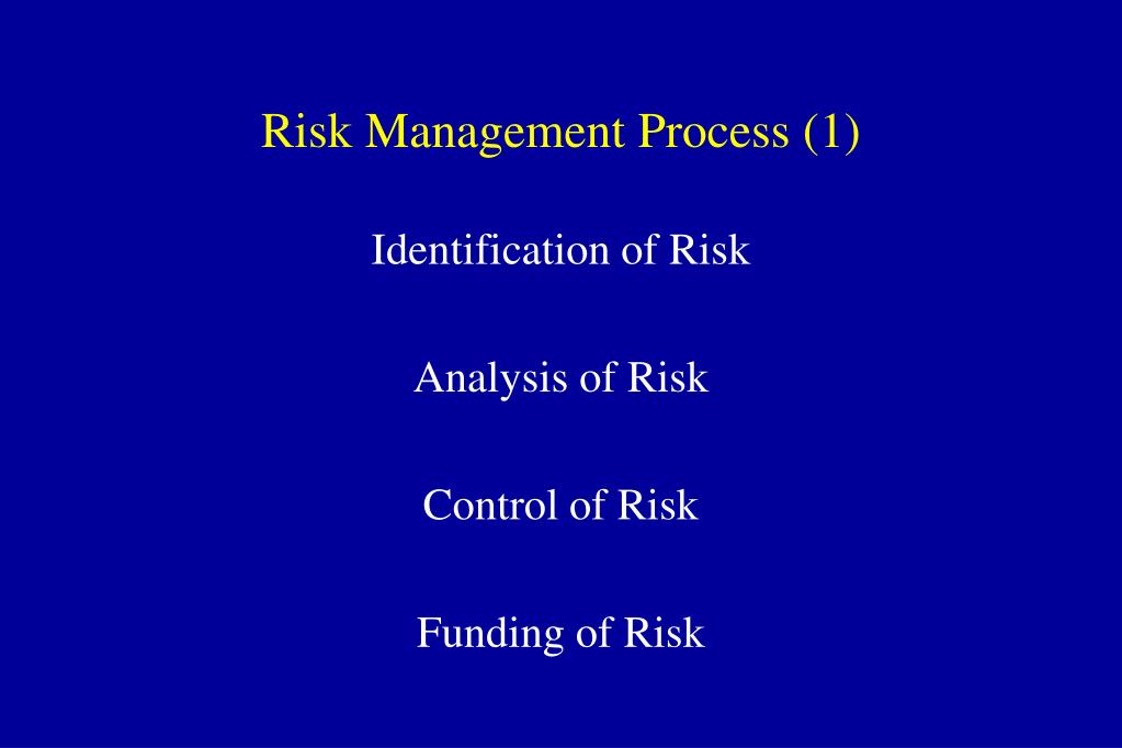 Risk Management Process (1)