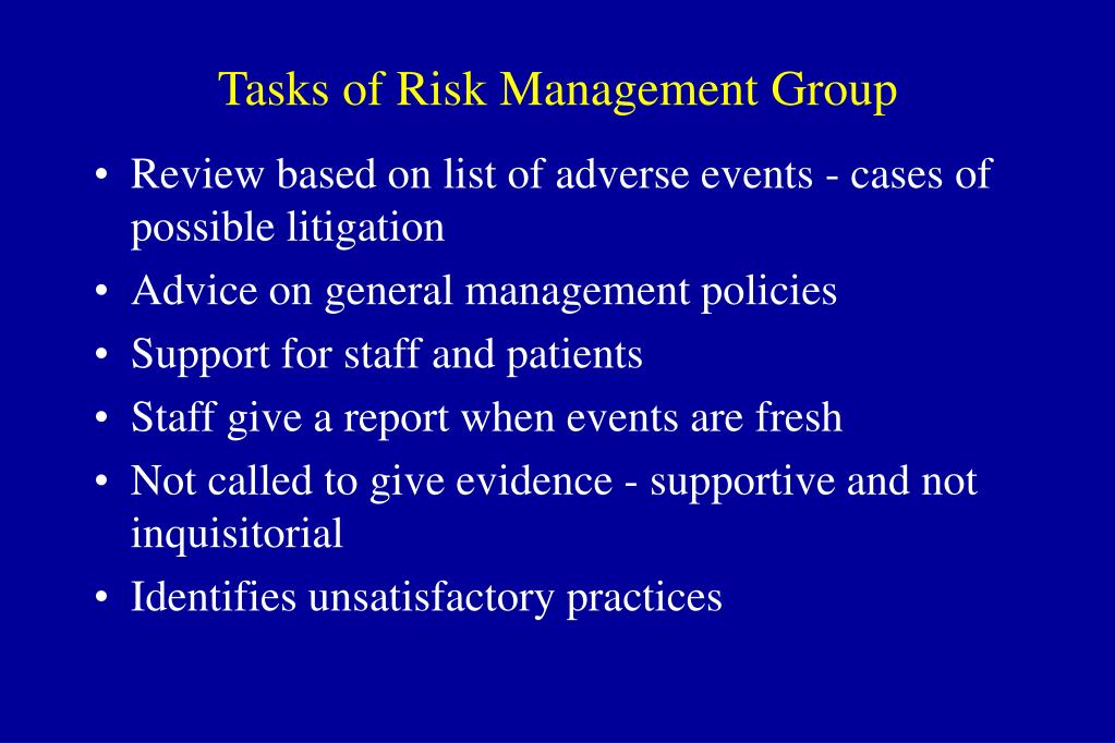 Tasks of Risk Management Group