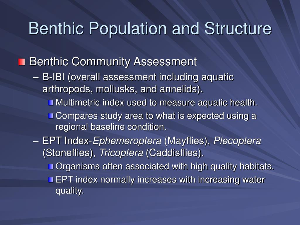 Benthic Population and Structure