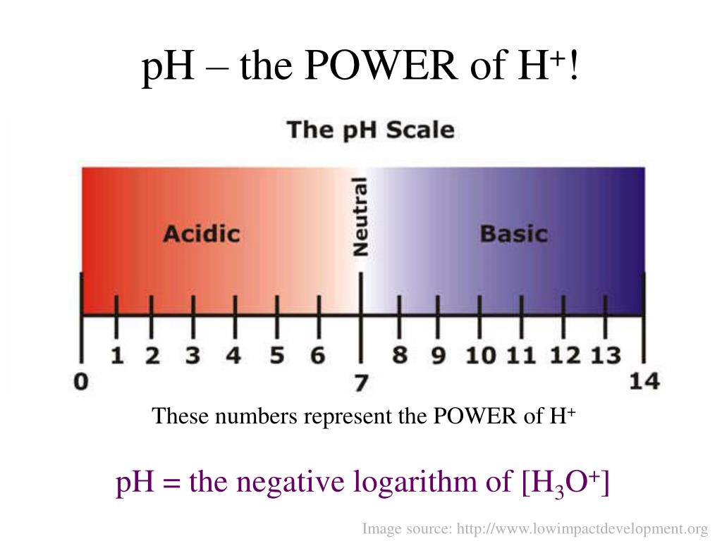 pH – the POWER of H