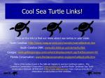 cool sea turtle links
