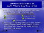 general characteristics of south atlantic bight sea turtles