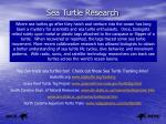 sea turtle research