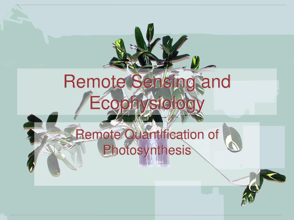 remote sensing and ecophysiology l.
