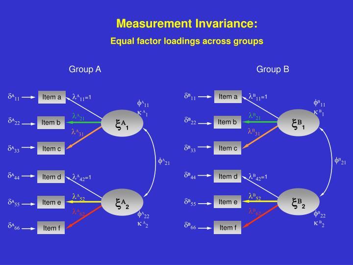 Measurement Invariance: