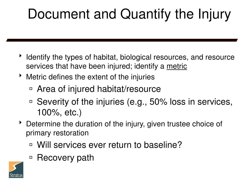 Document and Quantify the Injury