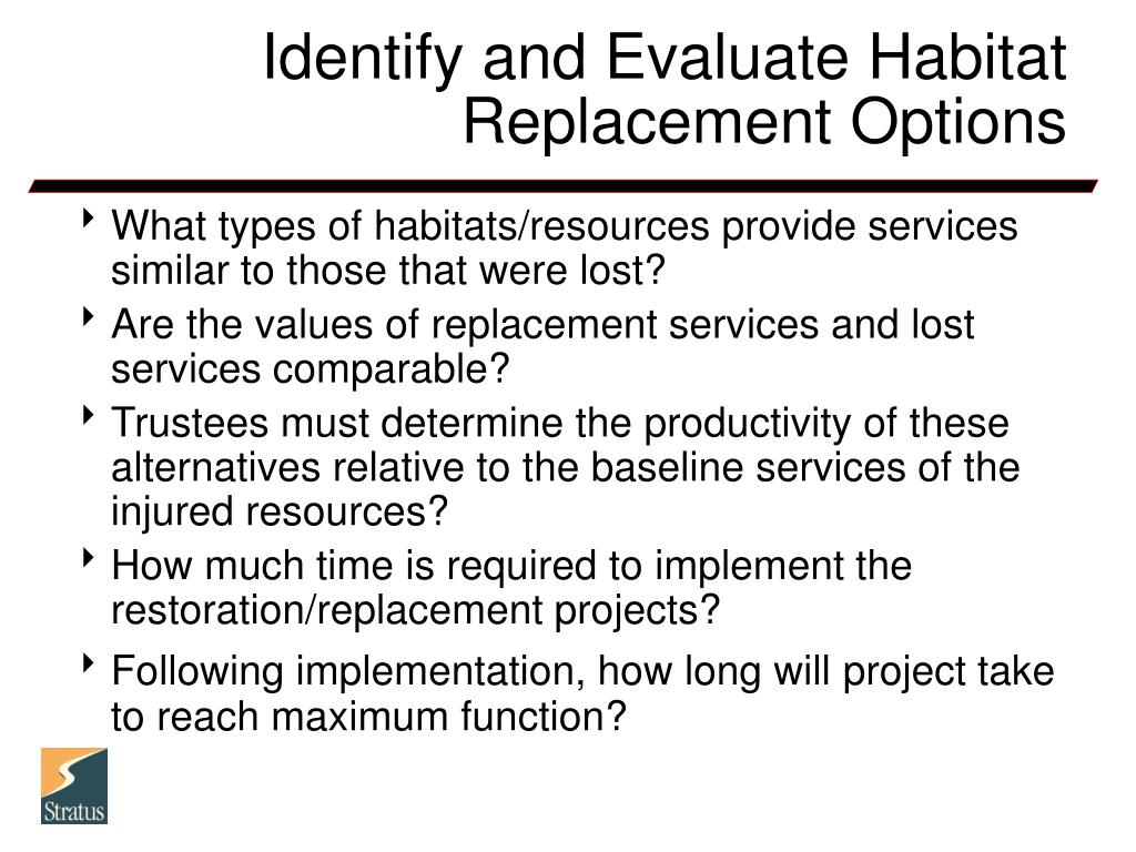 Identify and Evaluate Habitat Replacement Options