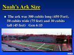 noah s ark size