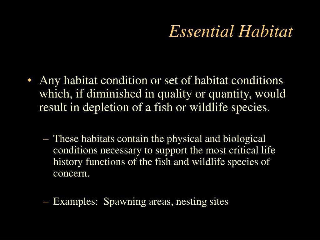 Essential Habitat