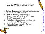 cips work overview