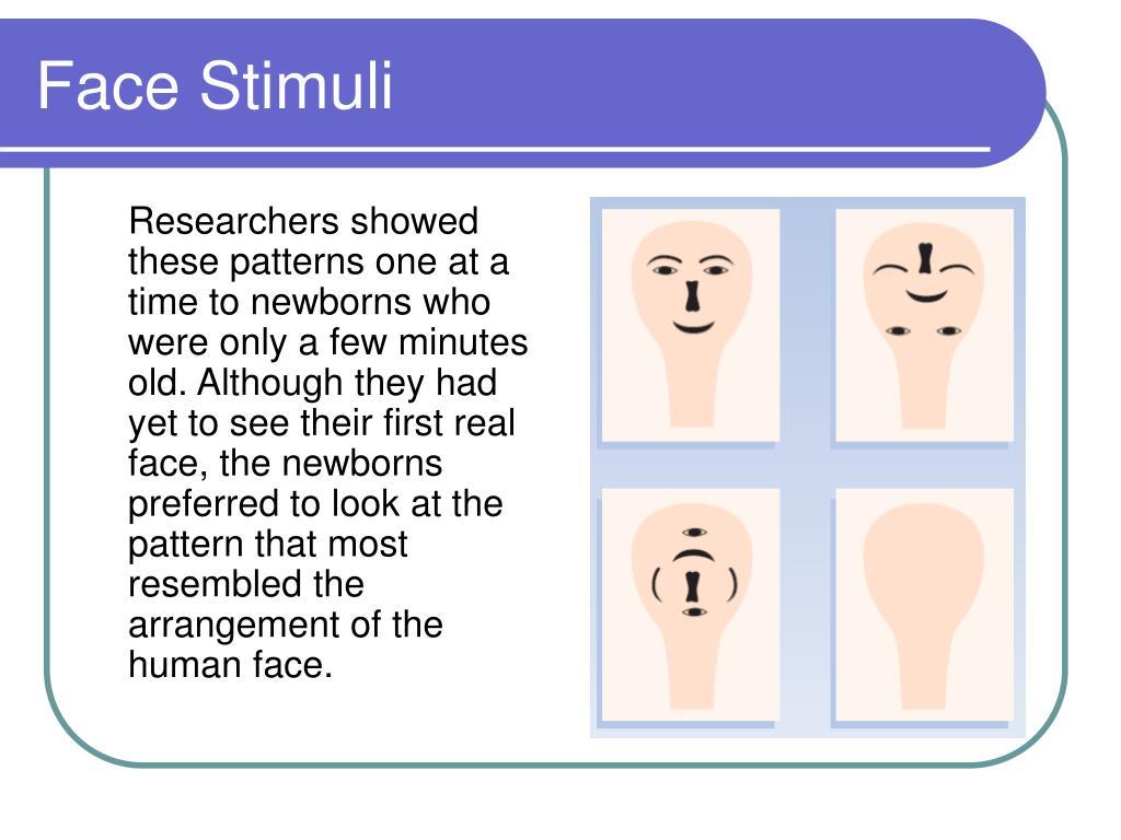 Face Stimuli