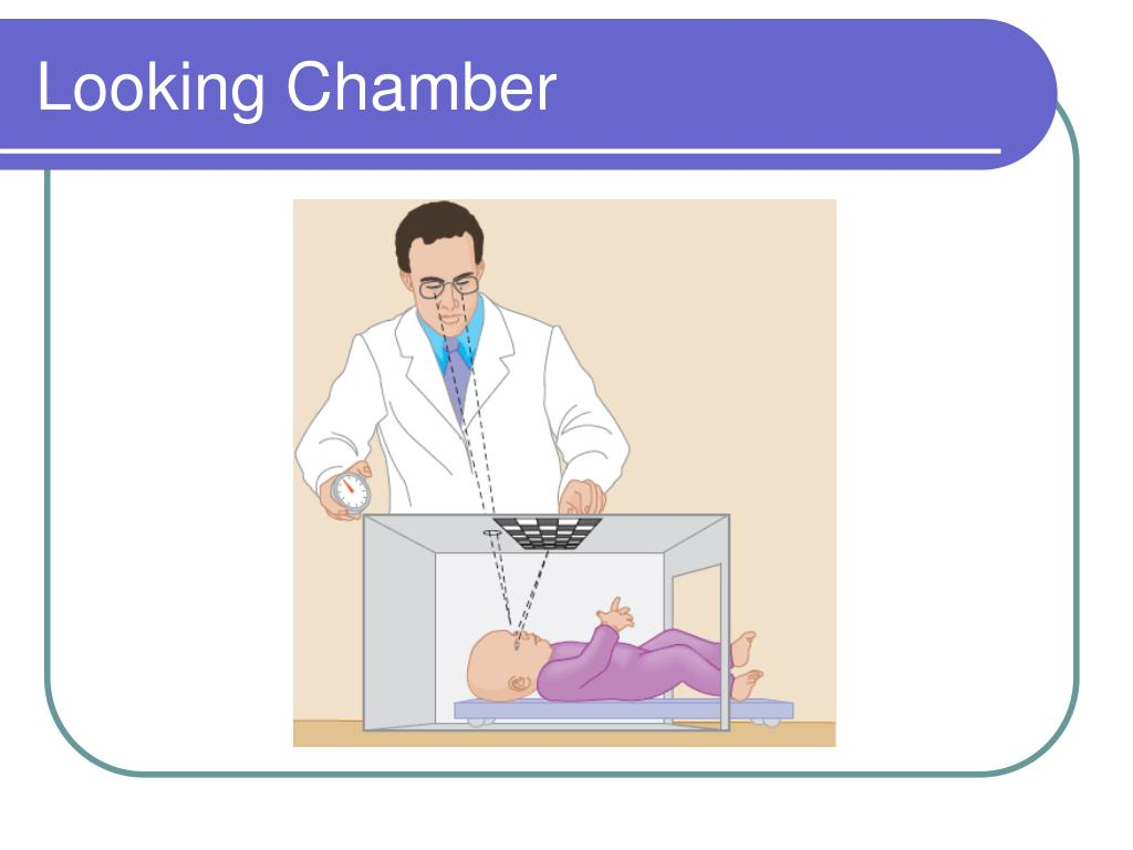 Looking Chamber