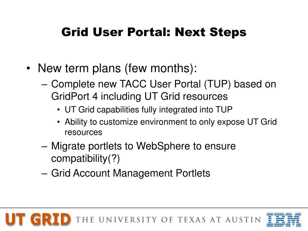 Grid User Portal: Next Steps