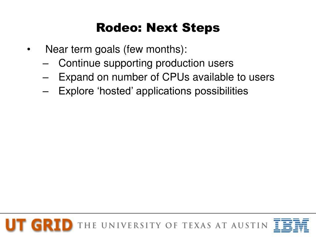 Rodeo: Next Steps