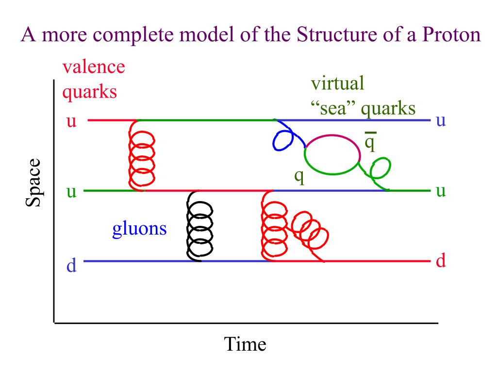 A more complete model of the Structure of a Proton