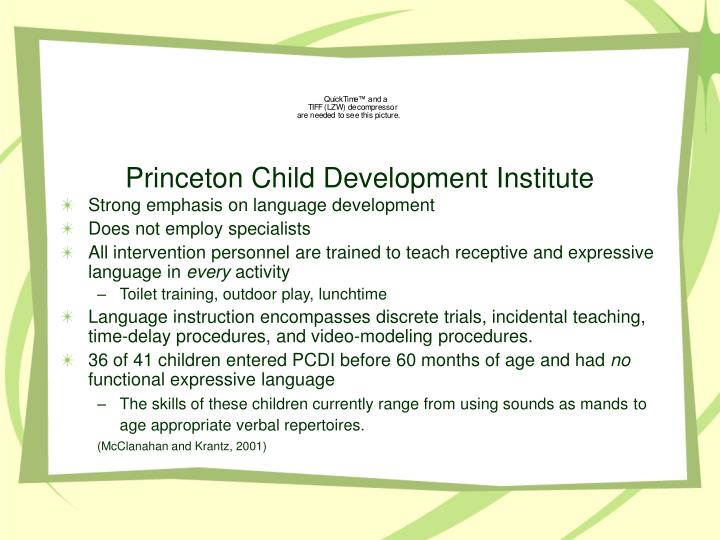 Princeton Child Development Institute